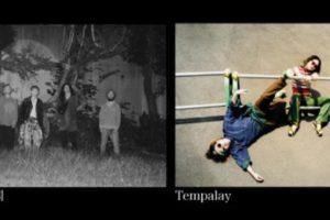 踊ってばかりの国、自主企画第4弾発表。対バンは「Tempalay」。