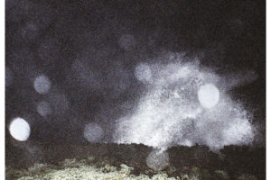 TY SEGALLのバンドメンバーとしても活動するMIKAL CRONIN(ミカル・クローニン)のニューアルバム『Seeker』より、「SHELTER」のMVが公開。